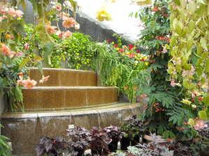 植物公園のサムネール画像