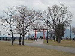 花見201104