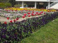 植物公園②